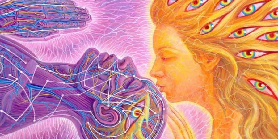 Find Your Twin Flame in Seven Steps